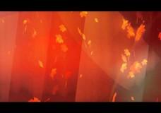 Фон видео «Осень»