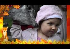 Слайдшоу «Детское осеннее»